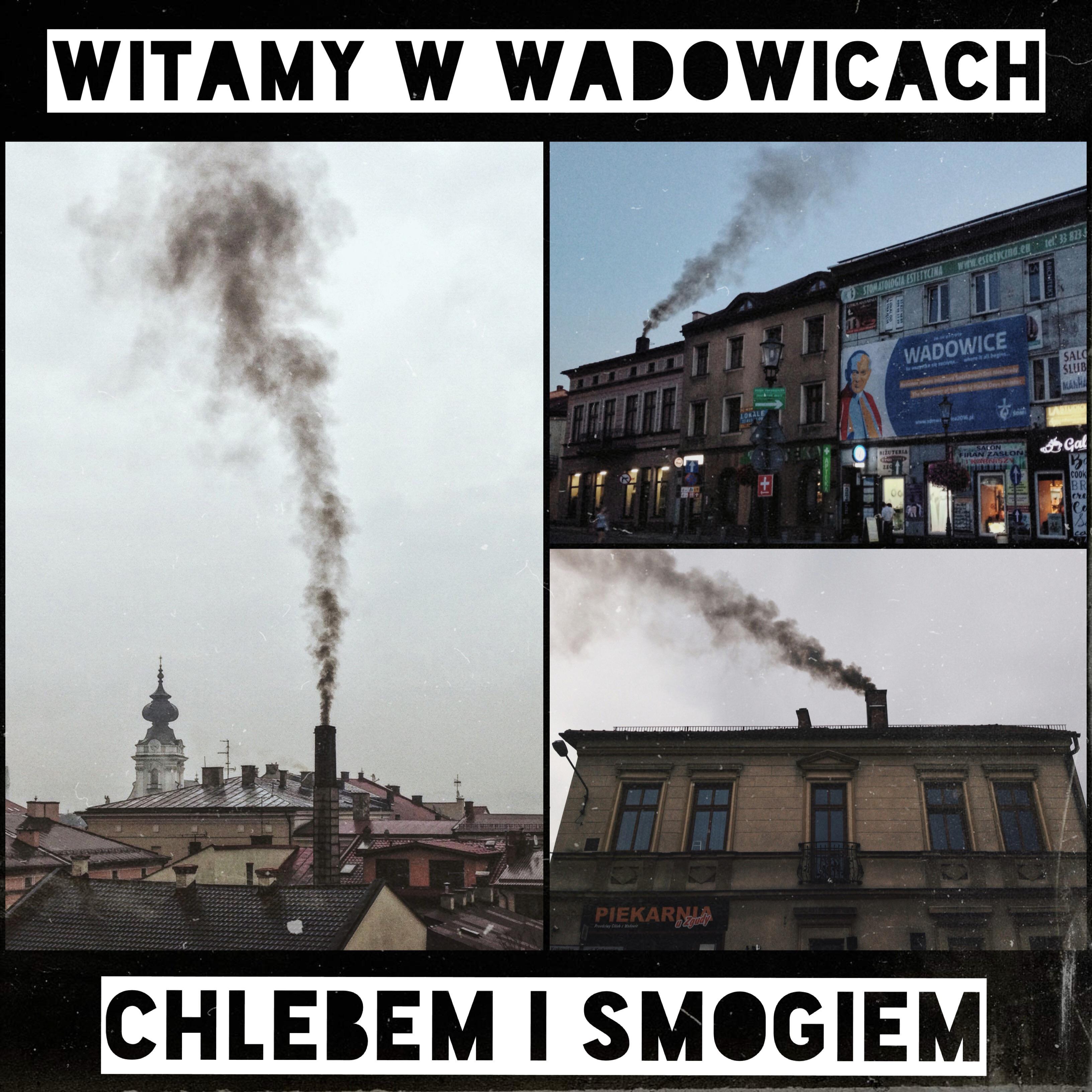 Taki wizerunek Wadowic widzą dzisiaj odwiedzający je turyści. Czas to zmienić!